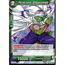 TB2-040 C Piccolo junior, attaque prompte