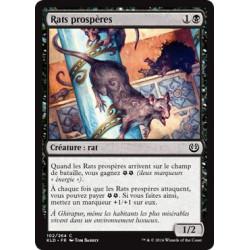 Rats prospères / Thriving Rats