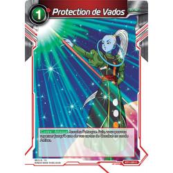 BT1-025 Protection de Vados