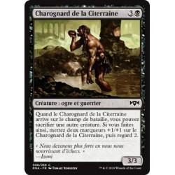 Charognard de la Citerraine / Undercity Scavenger