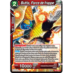 TB3-008 Butta, Force de frappe