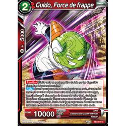 TB3-010 Guldo, Force de frappe