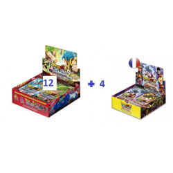 Boîte 24 boosters B06 Destroyer Kings X12