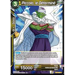 BT6-088 Piccolo, le déterminé