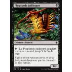 Plégicarde jaillissant / Skittering Heartstopper