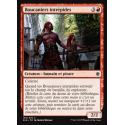 Boucaniers intrépides / Brazen Bucaneers