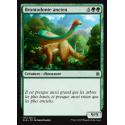 Brontodonte ancien / Ancient Brontodon