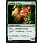 Scramasaxe vorace / Ravenous Daggertooth