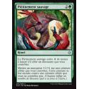 Piétinement sauvage / Savage Stomp