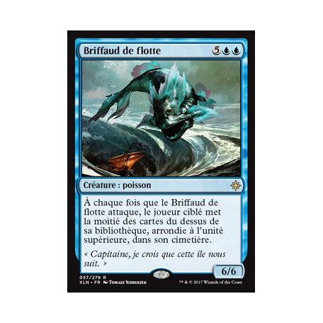 Briffaud de flotte / Fleet Swallower